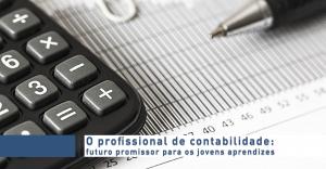 O profissional de contabilidade: futuro promissor para os jovens aprendizes